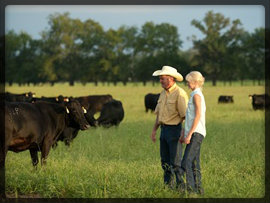 Chuck & Katie Madaris CK Cattle 1